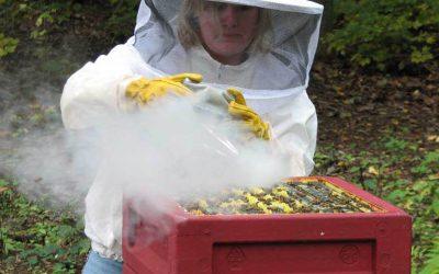 jen-smoking-hive